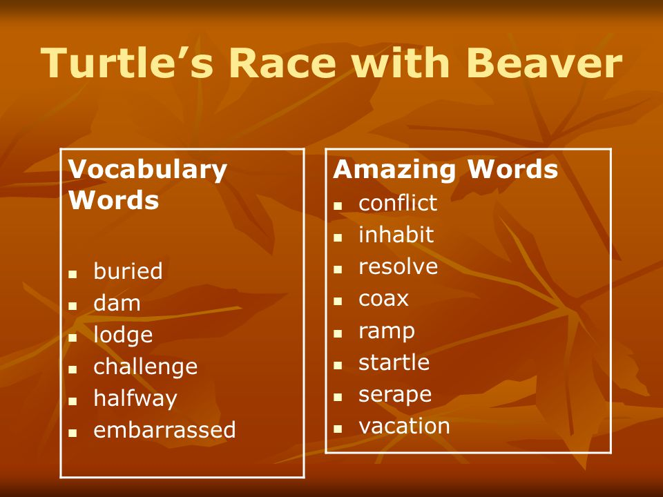 Turtle's Race with Beaver Vocabulary Words buried dam lodge challenge halfway embarrassed Amazing Words conflict inhabit resolve coax ramp startle serape vacation
