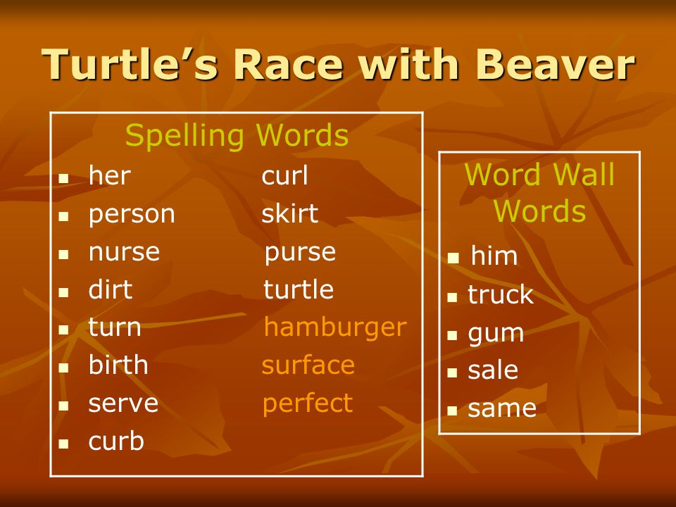 Turtle's Race with Beaver Spelling Words her curl person skirt nurse purse dirt turtle turn hamburger birth surface serve perfect curb Word Wall Words him truck gum sale same