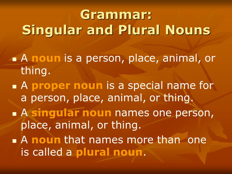 Grammar: Singular and Plural Nouns A noun is a person, place, animal, or thing.