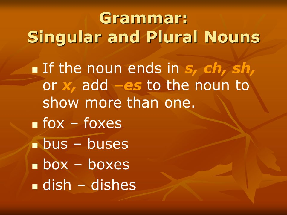 Grammar: Singular and Plural Nouns If the noun ends in s, ch, sh, or x, add –es to the noun to show more than one.