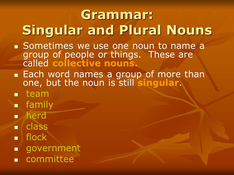 Grammar: Singular and Plural Nouns Sometimes we use one noun to name a group of people or things.