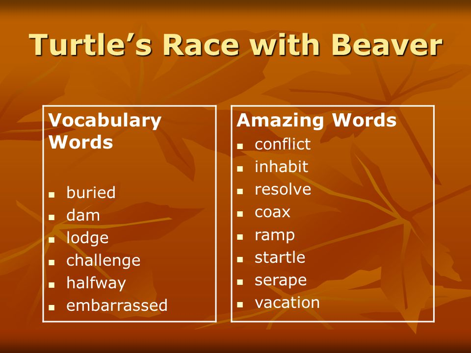 Turtle's Race with Beaver Wednesday Journal Topic Write about a time when you shared something.