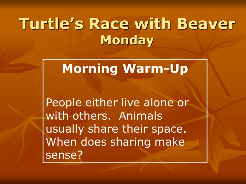 Singular and Plural Nouns cat, roads, pedals, bike, dresses, door, beaver, lodge, serapes, friends, races, turtle SingularPlural