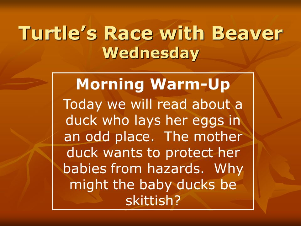 Turtle's Race with Beaver Wednesday Morning Warm-Up Today we will read about a duck who lays her eggs in an odd place.
