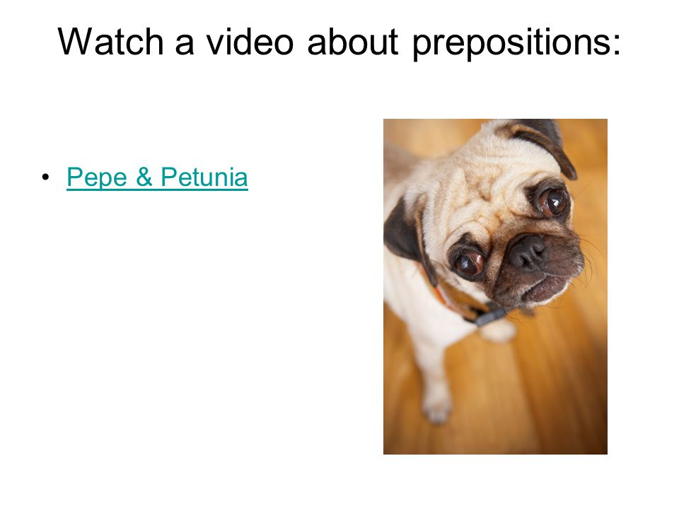 Watch a video about prepositions: Pepe & Petunia
