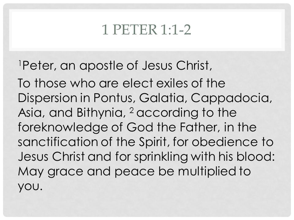 1 PETER 1:1-2 1 Peter, an apostle of Jesus Christ, To those who are elect exiles of the Dispersion in Pontus, Galatia, Cappadocia, Asia, and Bithynia, 2 according to the foreknowledge of God the Father, in the sanctification of the Spirit, for obedience to Jesus Christ and for sprinkling with his blood: May grace and peace be multiplied to you.