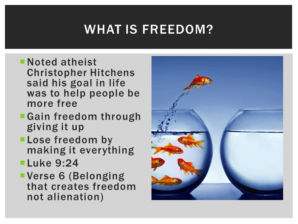  Noted atheist Christopher Hitchens said his goal in life was to help people be more free  Gain freedom through giving it up  Lose freedom by making it everything  Luke 9:24  Verse 6 (Belonging that creates freedom not alienation) WHAT IS FREEDOM?