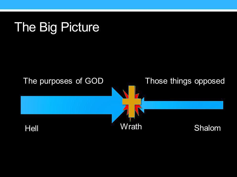 The Big Picture Wrath The purposes of GOD Those things opposed Hell Shalom