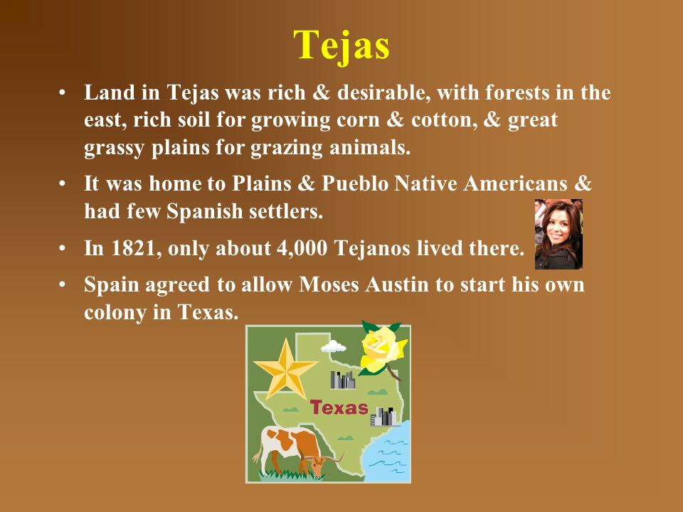 Tejas Land in Tejas was rich & desirable, with forests in the east, rich soil for growing corn & cotton, & great grassy plains for grazing animals.