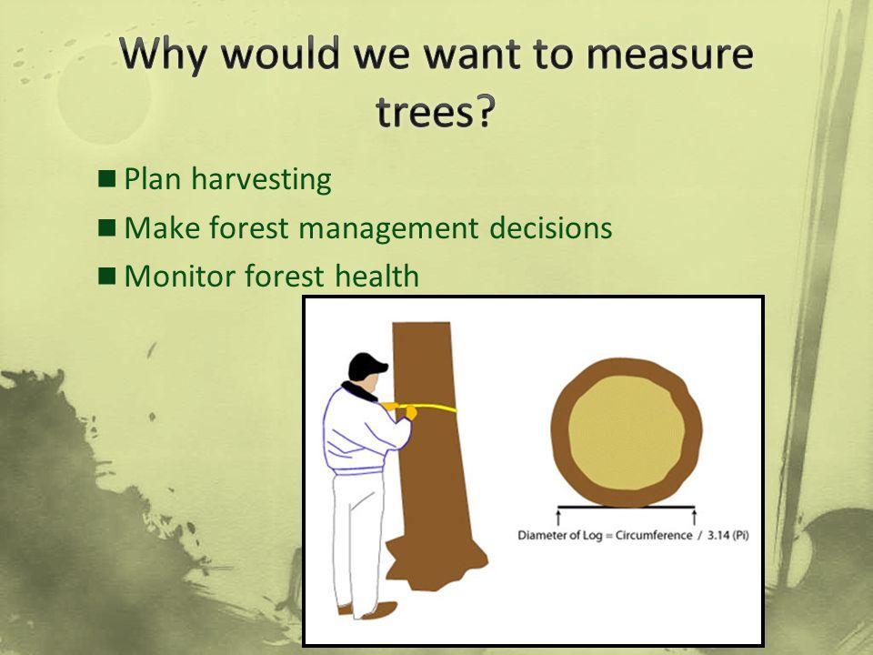 Plan harvesting Make forest management decisions Monitor forest health