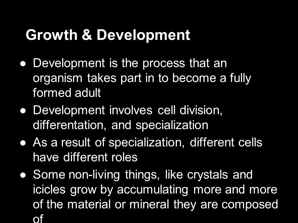 Growth & Development ●Development is the process that an organism takes part in to become a fully formed adult ●Development involves cell division, di