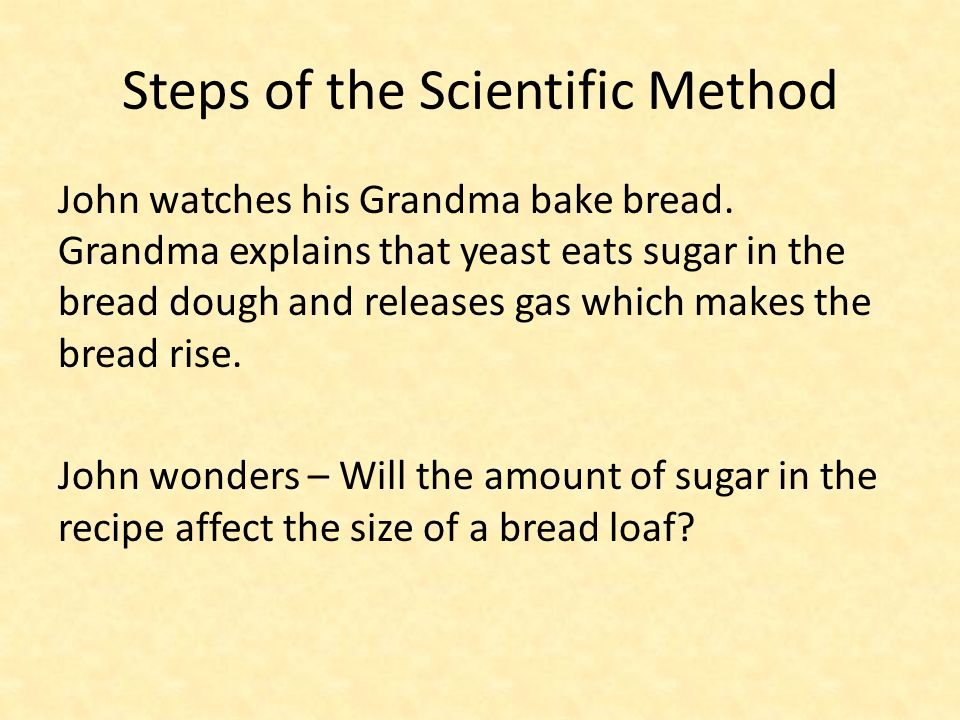 Steps of the Scientific Method John watches his Grandma bake bread. Grandma explains that yeast eats sugar in the bread dough and releases gas which m
