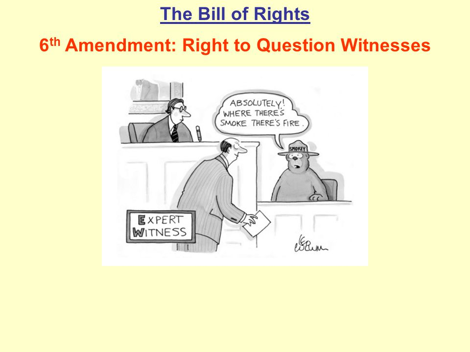 The Bill of Rights 6 th Amendment: Right to Question Witnesses