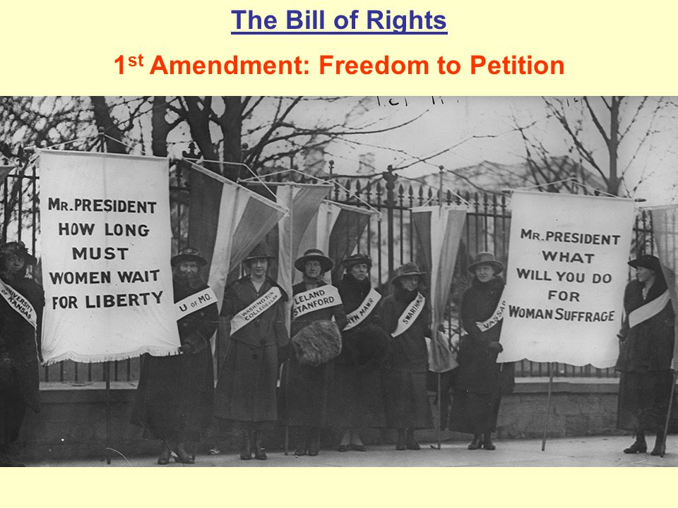 The Bill of Rights 1 st Amendment: Freedom to Petition