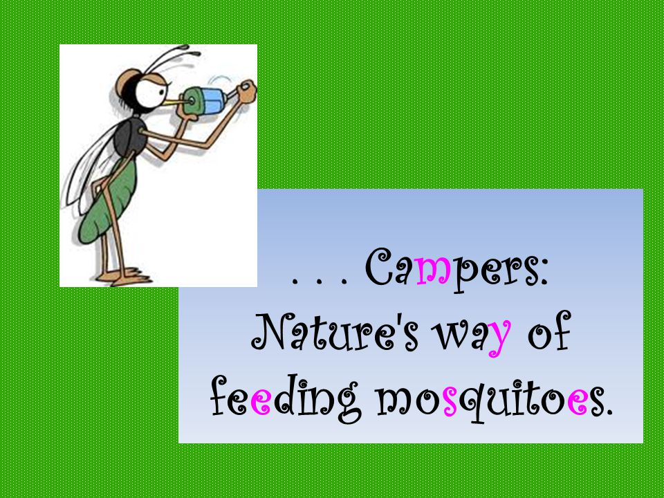 ... Campers: Nature s way of feeding mosquitoes.