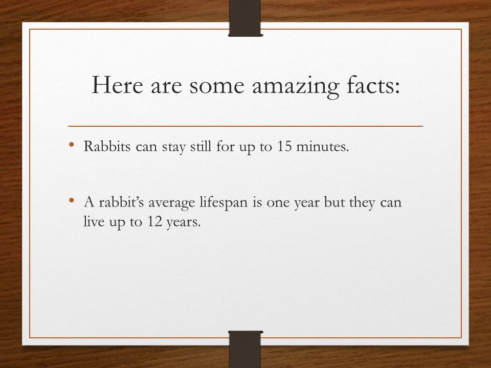 Reproduction Rabbits have 1-12 babies in a litter also they are 8cm and can not see when they are born.