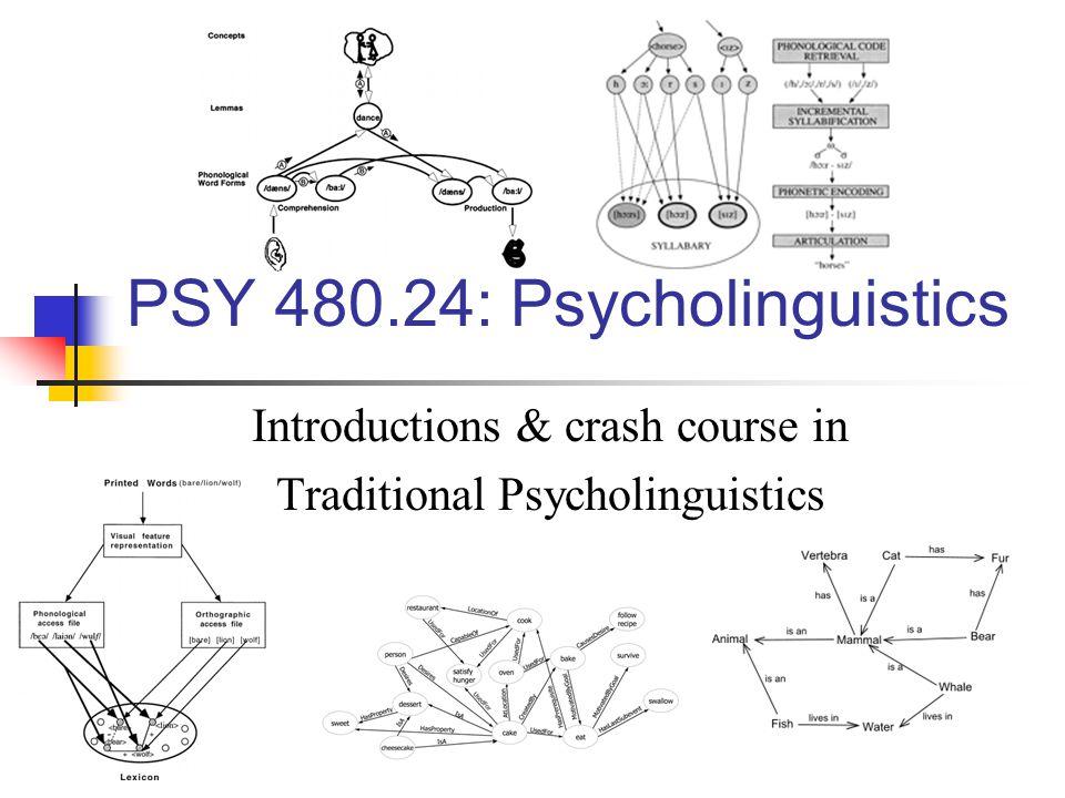 What is psycholinguistics ?