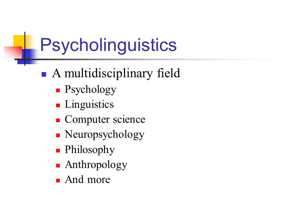 Psycholinguistics A multidisciplinary field Psychology Linguistics Computer science Neuropsychology Philosophy Anthropology And more
