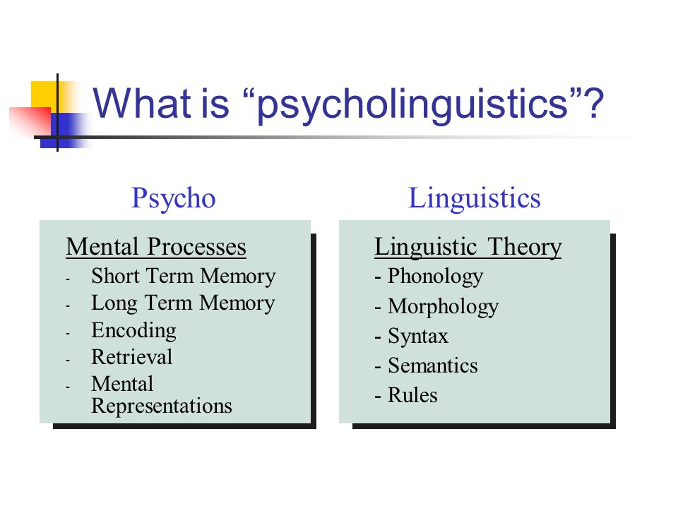 "What is ""psycholinguistics""? Mental Processes - Short Term Memory - Long Term Memory - Encoding - Retrieval - Mental Representations Linguistic Theory"