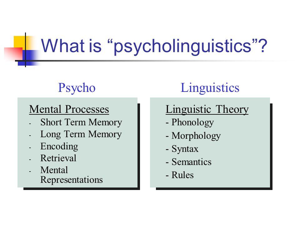 Lexical organization Factors that affect organization Phonology Frequency Imageability, concreteness, abstractness Grammatical class Semantics