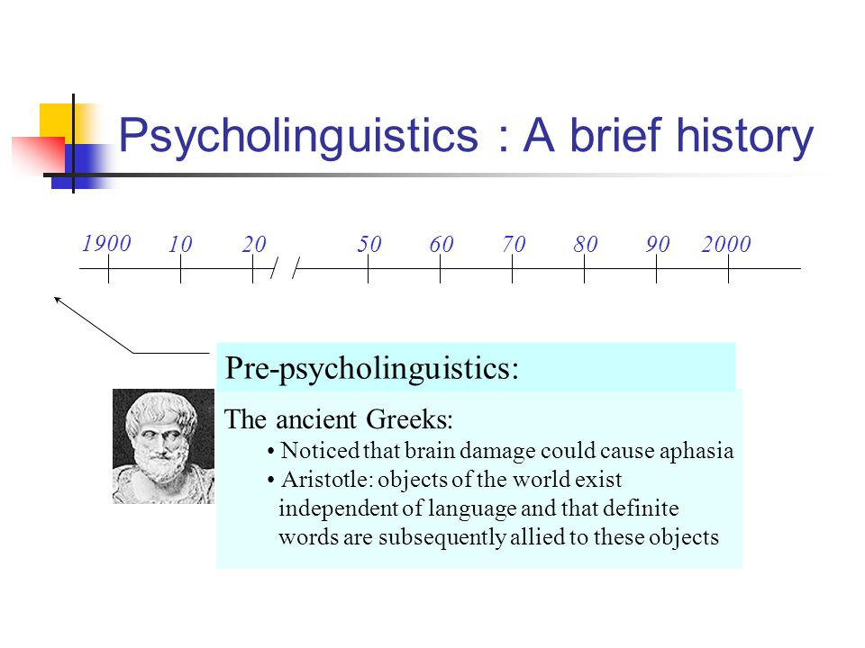 Psycholinguistics : A brief history 1900 102050607080902000 Pre-psycholinguistics: The ancient Greeks: Noticed that brain damage could cause aphasia A