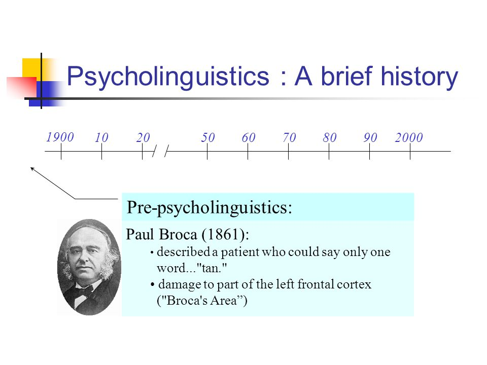 Psycholinguistics : A brief history 1900 102050607080902000 Pre-psycholinguistics: Paul Broca (1861): described a patient who could say only one word.