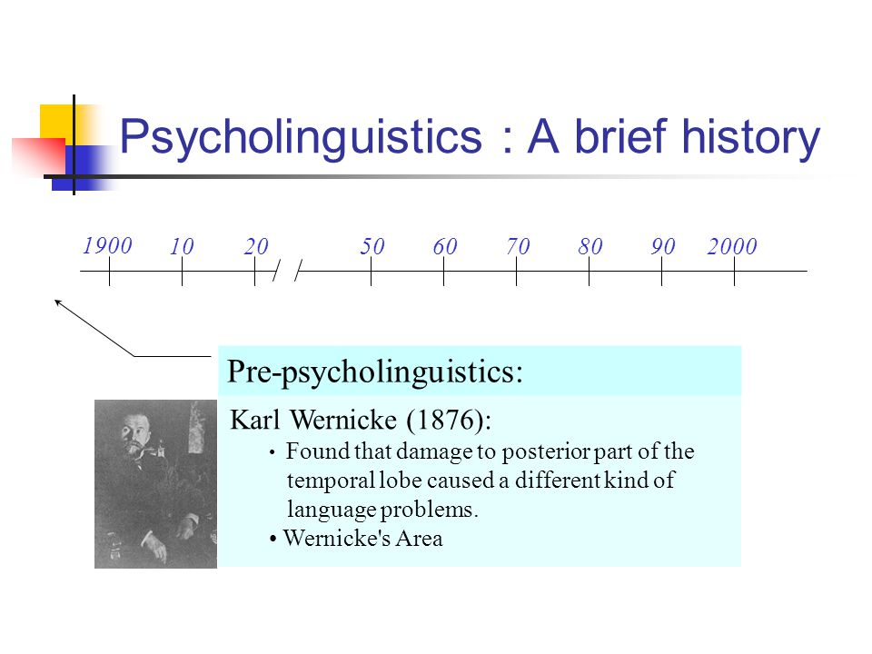 Lexical access How do we retrieve the linguistic information from Long-term memory.