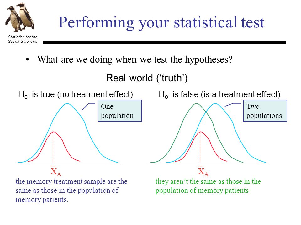 Statistics for the Social Sciences Performing your statistical test What are we doing when we test the hypotheses.