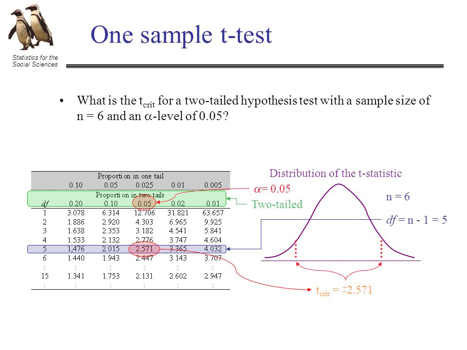 Statistics for the Social Sciences One sample t-test What is the t crit for a two-tailed hypothesis test with a sample size of n = 6 and an  -level of 0.05.