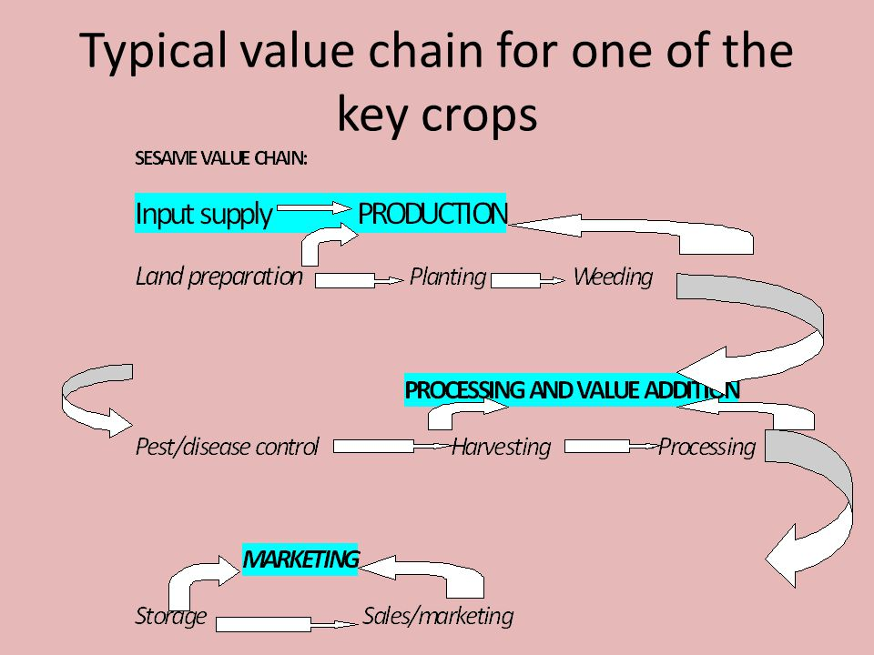 Typical value chain for one of the key crops