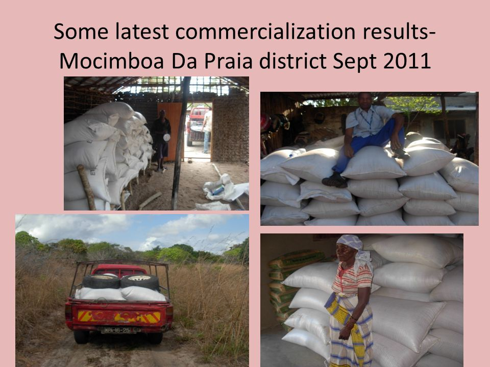 Some latest commercialization results- Mocimboa Da Praia district Sept 2011