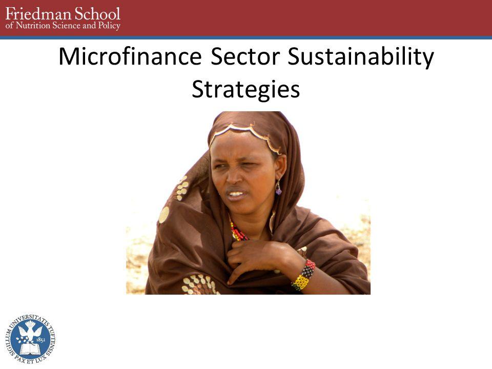 Microfinance Sector Sustainability Strategies