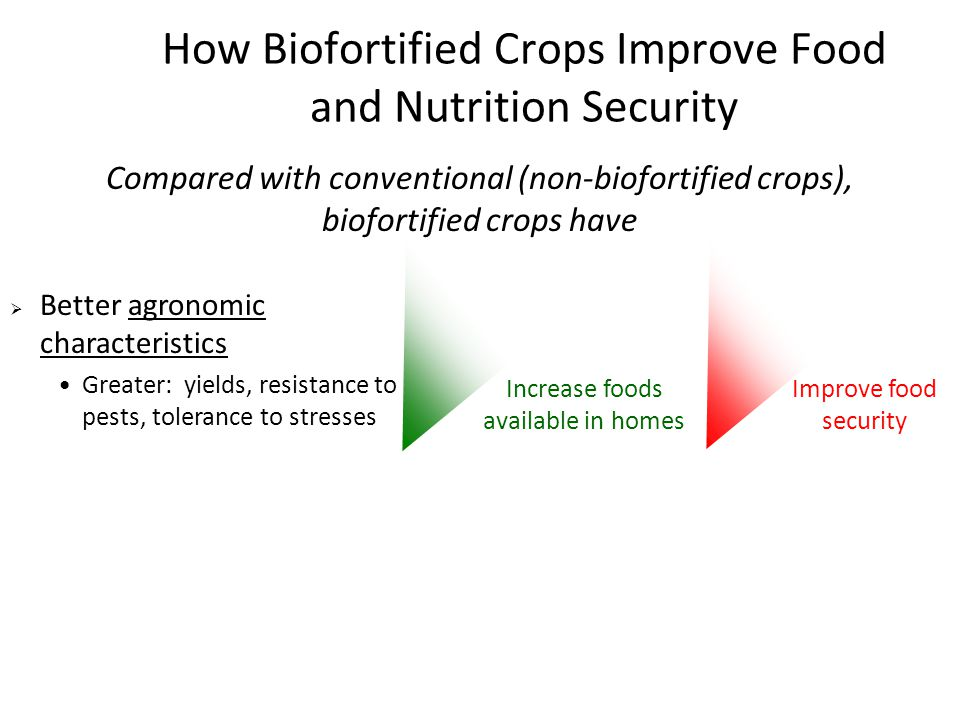 How Biofortified Crops Improve Food and Nutrition Security Compared with conventional (non-biofortified crops), biofortified crops have Increase foods