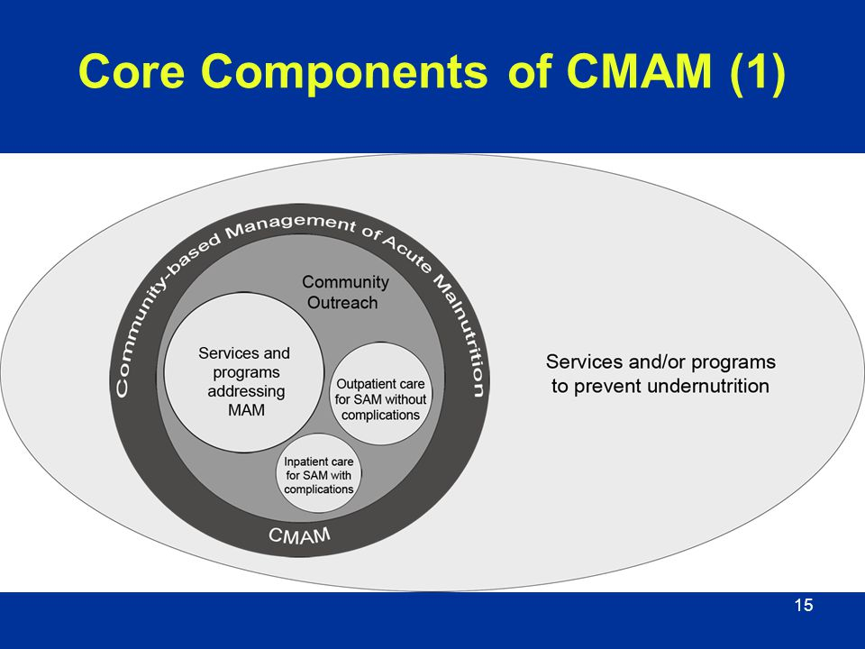 15 Core Components of CMAM (1)