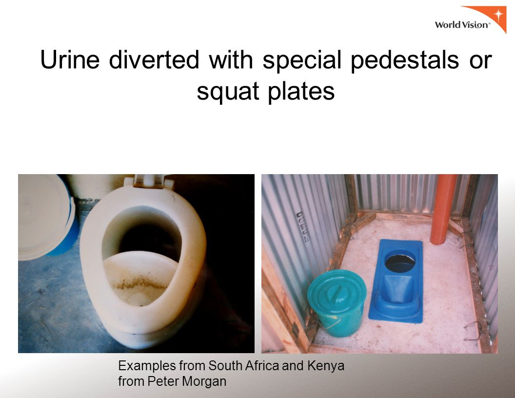 Urine diverted with special pedestals or squat plates Examples from South Africa and Kenya from Peter Morgan