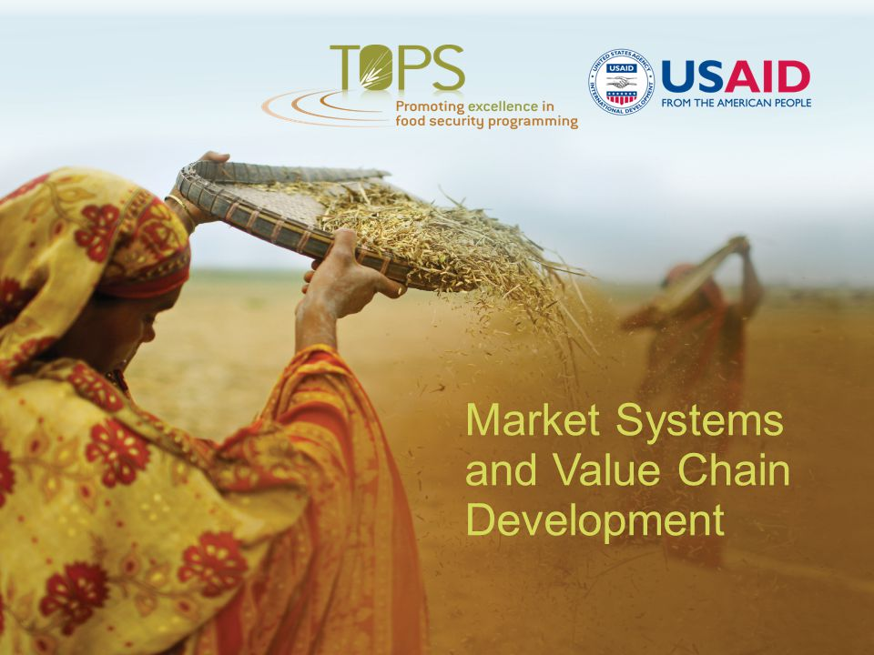 Market Systems and Value Chain Development