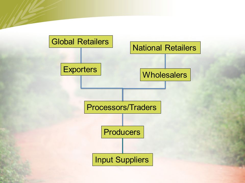 Input Suppliers Producers Processors/Traders Wholesalers Exporters National Retailers Global Retailers