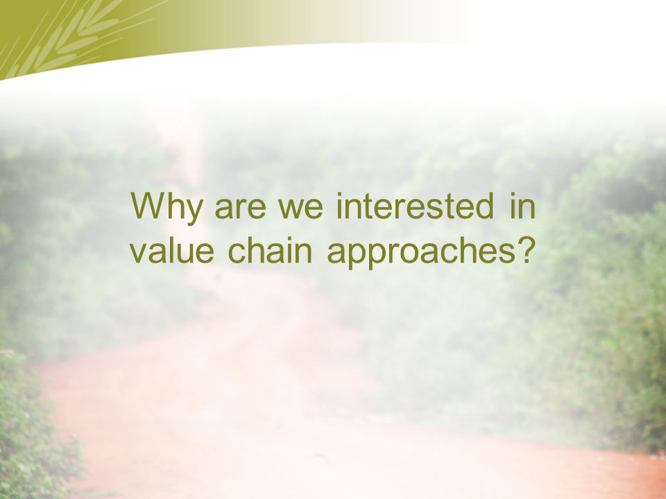 Why are we interested in value chain approaches