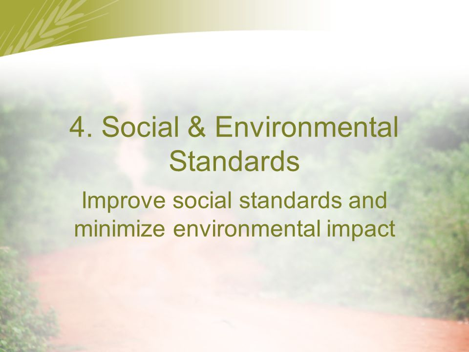 4. Social & Environmental Standards Improve social standards and minimize environmental impact