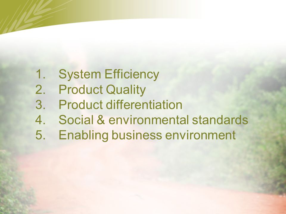 1.System Efficiency 2.Product Quality 3.Product differentiation 4.Social & environmental standards 5.Enabling business environment