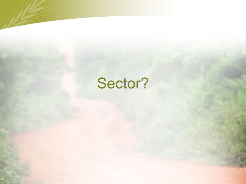 Sector?