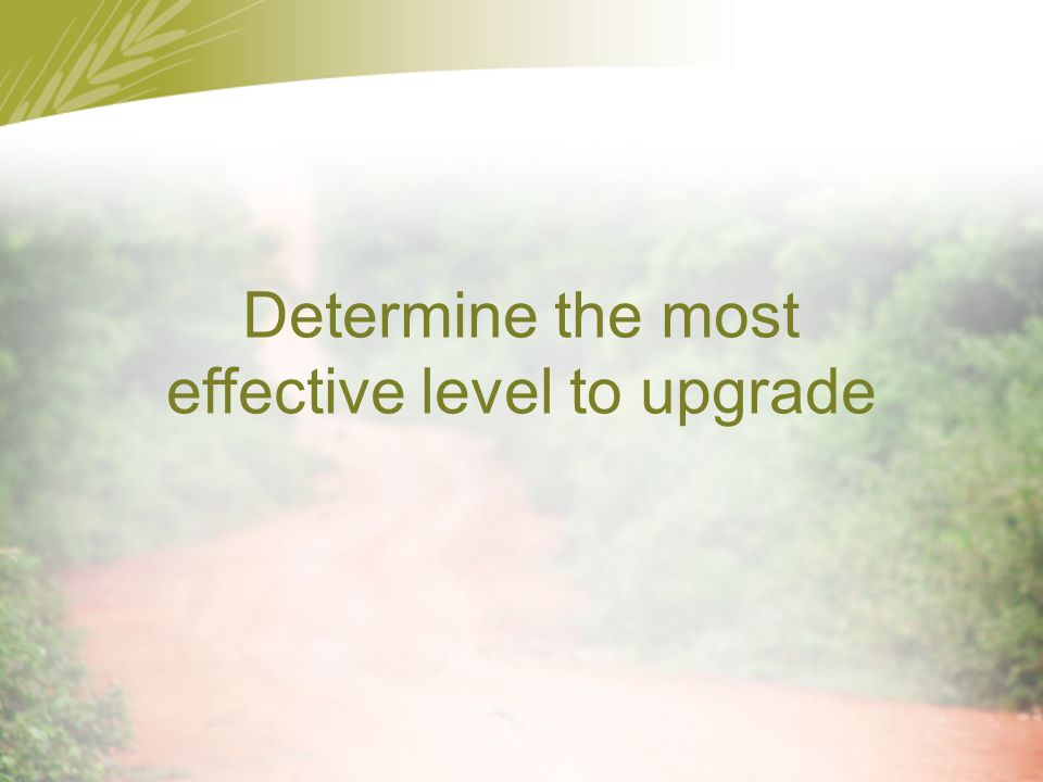 Determine the most effective level to upgrade