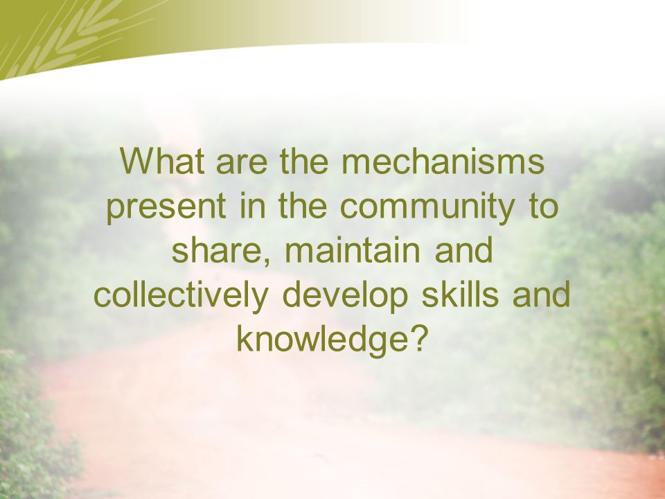 What are the mechanisms present in the community to share, maintain and collectively develop skills and knowledge