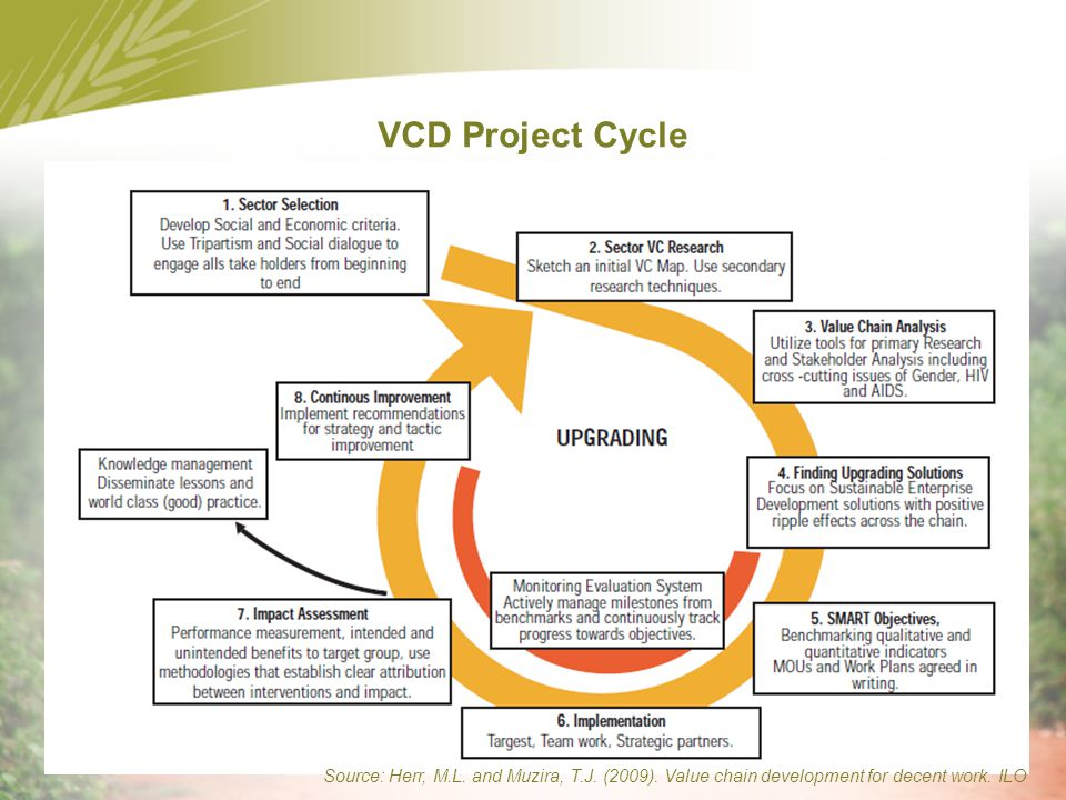 VCD Project Cycle Source: Herr, M.L. and Muzira, T.J.