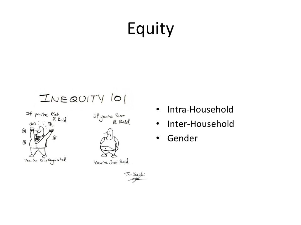 Equity Intra-Household Inter-Household Gender