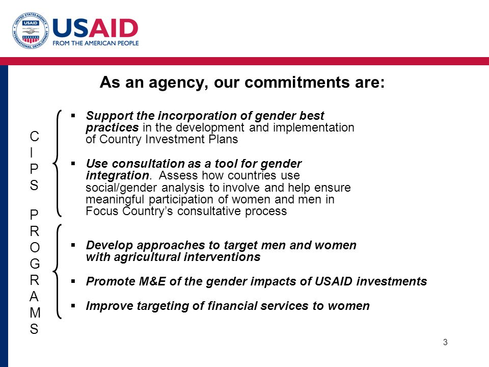  Support the incorporation of gender best practices in the development and implementation of Country Investment Plans  Use consultation as a tool for gender integration.