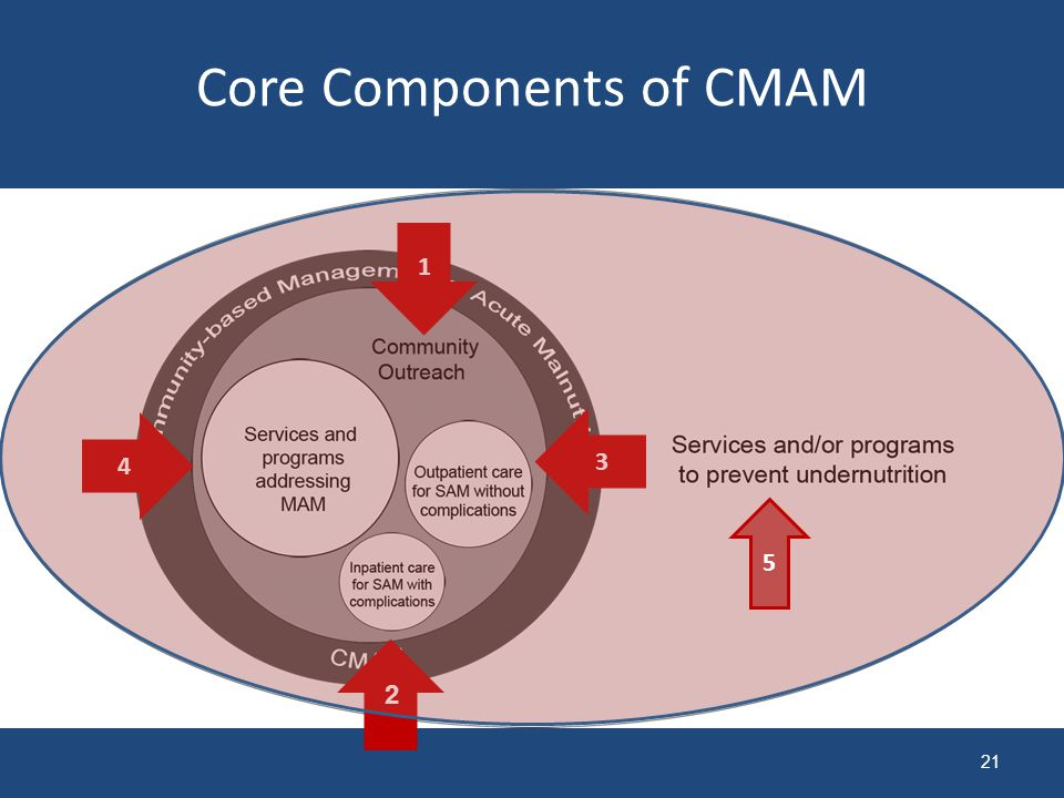 21 Core Components of CMAM 1 2 3 4 5