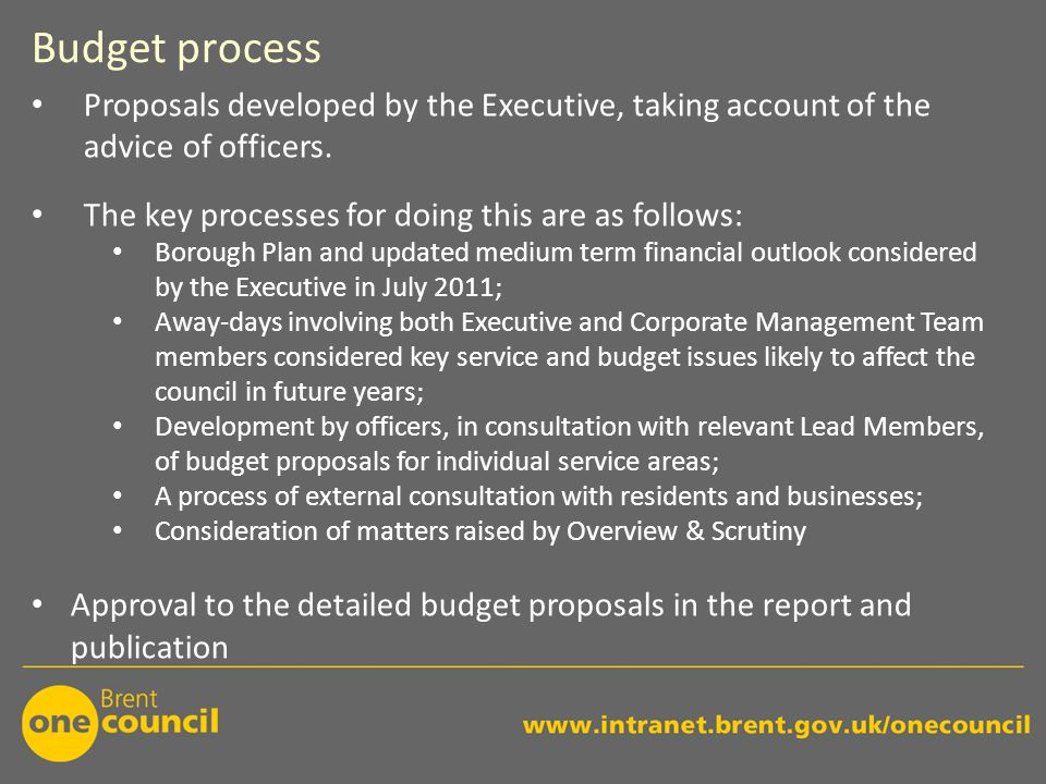 Budget process Proposals developed by the Executive, taking account of the advice of officers.