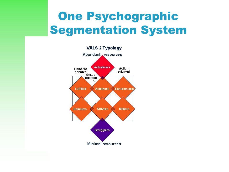 One Psychographic Segmentation System