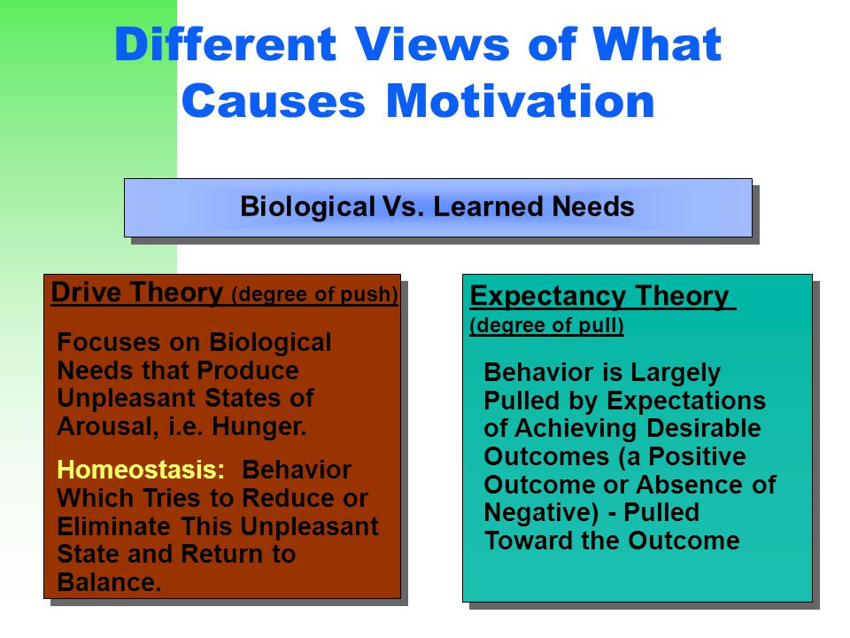 Different Views of What Causes Motivation Expectancy Theory (degree of pull) Expectancy Theory (degree of pull) Drive Theory (degree of push) Drive Th